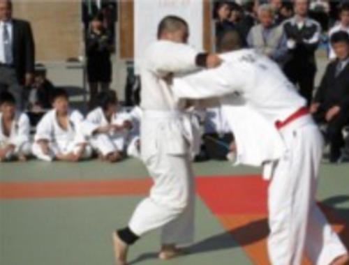 奉納武道大会、スポーツ、神振行事も1
