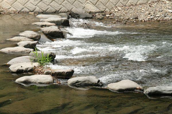 清流の森 大川原峡キャンプ場
