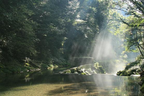 花房峡 憩いの森キャンプ場