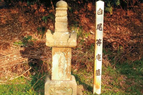 白尾桃庵の墓