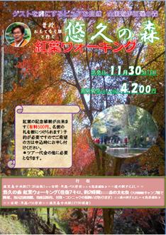 悠久の森ウォ―キング02.png